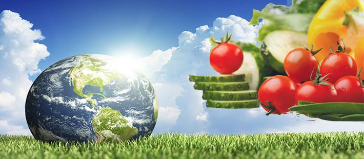 Πως η vegan διατροφή προστατεύει το περιβάλλον