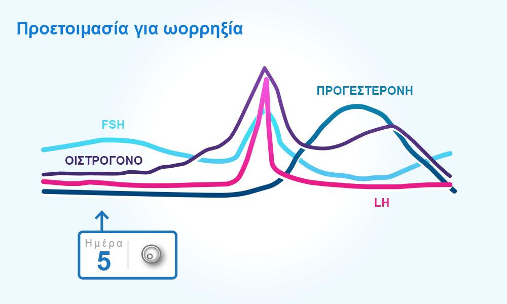 Οι ορμόνες κατά τη διάρκεια του κύκλου