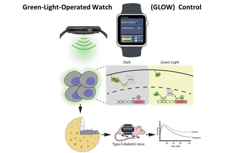 Το μέλλον στο διαβήτη: έλεγχος της παραγωγής ινσουλίνης μέσω smartwatch