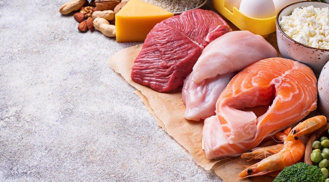 ζωική πρωτεΐνη
